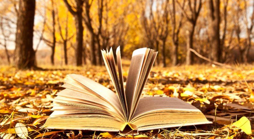 letture libri