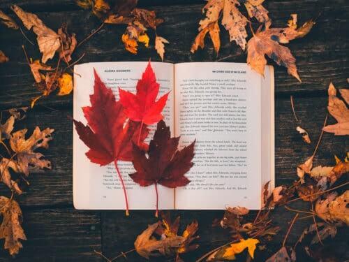 Segnalazioni letterarie novembre