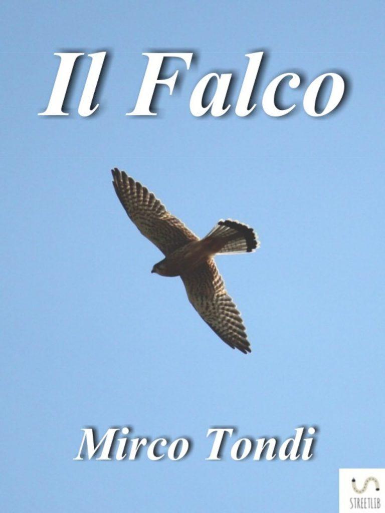 Tempo di nuove letture - Il falco