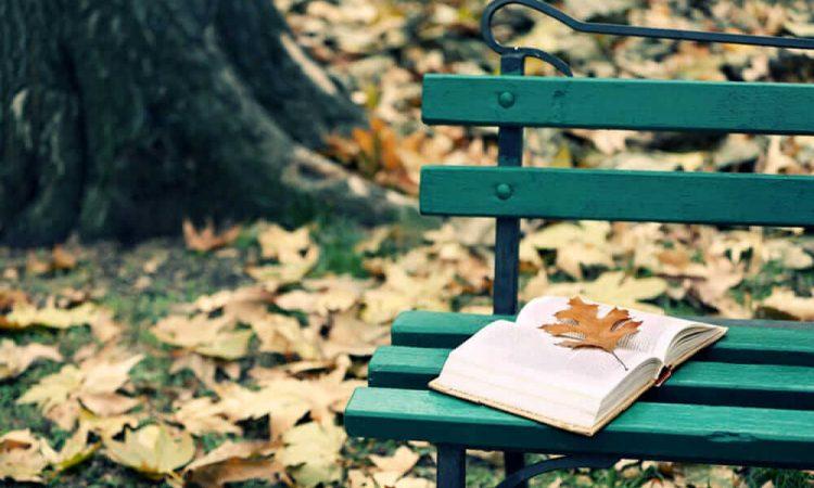"""Incontri letterari """"In giro per parole"""": 5 appuntamenti per questo ottobre, da segnare in agenda"""